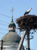 Nest of stork near the rural church — Stock Photo