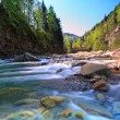 Rapid mountain river — Stock Photo