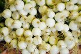 Pearl Onions — Stock Photo