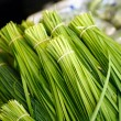 Chinese Chives — Stock Photo