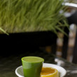 Stock Photo: Wheat Grass Shot