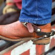 Cowboy Boot and Spur - Stock Photo