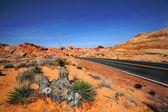 Rainbow Vista Nevada — Stock Photo