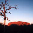 Royalty-Free Stock Photo: Ayers Rock