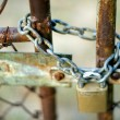Padlock and Gate - Stock Photo