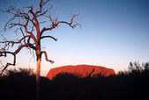 Ayers Rock — Stock Photo