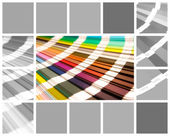 Collage color pantone — Stock Photo