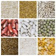 Cereal grains collage — Stock Photo