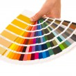 Stock Photo: Colour card