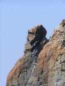 1 つの岩 — ストック写真