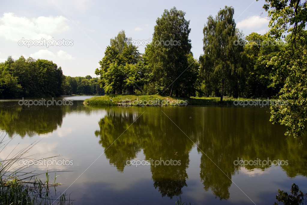 The lake in the forest — Stock Photo #1912263