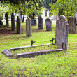 The graveyard — Stock Photo