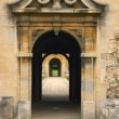 The old gate — Stock Photo #2160877