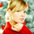 Beautiful Christmas 2 — Stock Photo #1931791