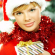 Beautiful Christmas 2 — Stock Photo #1931861