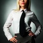 Business Tie — Stock Photo