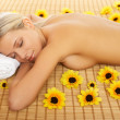 Daily Spa — Stock Photo #1955482