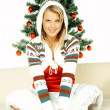 Beautiful Christmas 1 — Stock Photo #1955935