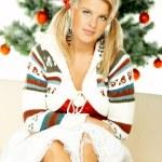 Beautiful Christmas 1 — Stock Photo #1956089