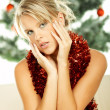 Beautiful Christmas 1 - Stock Photo
