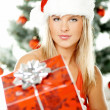 Beautiful Christmas 1 — Stock Photo #1956324