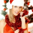 Beautiful Christmas 1 — Stock Photo