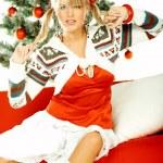Beautiful Christmas 1 — Stock Photo #1956495