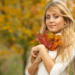 Its Autumn! — Stock Photo #1957178