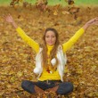 Its Autumn! 2 — Stockfoto
