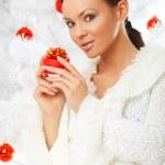 lindo Natal 2 — Foto Stock