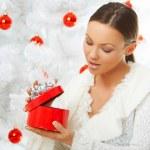 Beautiful Christmas 2 — Stock Photo
