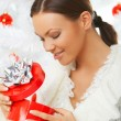 Beautiful Christmas 3 - Stock Photo
