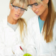 Female in lab — Stock Photo #1958642