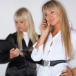 Business Women — Stock Photo #1958930