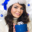 Blue Christmas Chick — Stock Photo