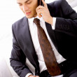 Portrait of Businessman - Stock Photo