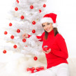 Christmas Beauty - Stock Photo