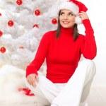 Weihnachten-Schönheit — Stockfoto