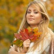 herfst chick — Stockfoto #1968286