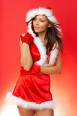 Christmas Chick — Stock Photo
