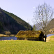 Stock Photo: Old boathouse