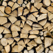 Wood stack — Stock Photo #1696219