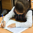 The schoolgirl writes to writing-books — ストック写真