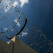 Barbed wire on a fence — Stock Photo #1712810