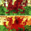Old flag of wales — Stock Photo