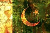 巴基斯坦 — 图库照片