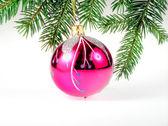 Christmas glass ball — Stock Photo