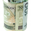 Stock Photo: Scroll polish money