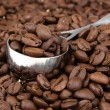 Coffe beans — Stock Photo #2185367