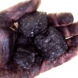 Stock Photo: Pieces of coal in dirty palm